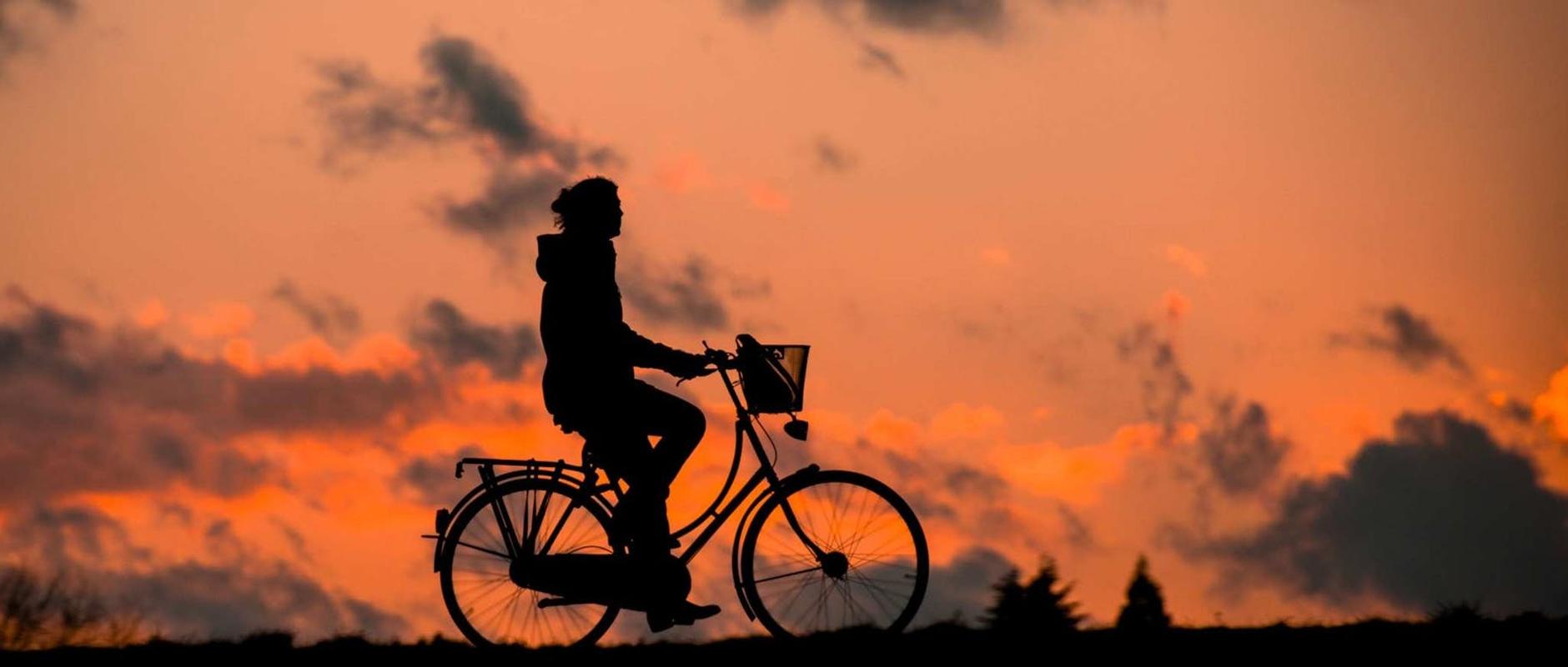 poster image 10 raisons d'aller au boulot à vélo dès aujourd'hui. Diminuer les risques de maladies. - 10 raisons d'aller au boulot à vélo dès aujourd'hui.