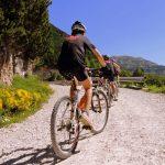 sentiers de vélo de montagne 150x150 - ACCUEIL